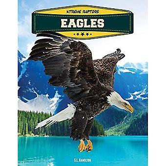 Eagles (Xtreme rapaces)