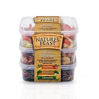 Natures Feast Small Animal Snack Selection Pots