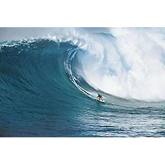 Poster - Let's Go Surfing - Wall Art CJ1389