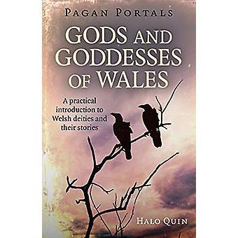 Pagan Portals - Gudar och gudinnor i Wales - En praktisk introduktion