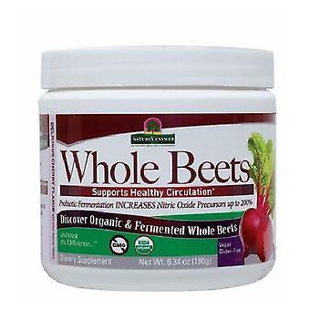 Risposta della natura Polvere di barbabietole intere biologiche e fermentate, 6,34 Oz