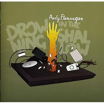 Andy Flannagan - Drowning in the Shallow [CD] USA import