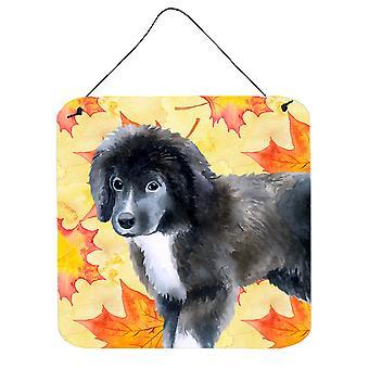 Newfoundland chiot automne mur ou porte accrocher impressions