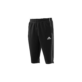 Adidas CORE18 34 Pnt CE9032 training all year men trousers