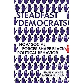 Steadfast Democrats - How Social Forces Shape Black Political Behavior