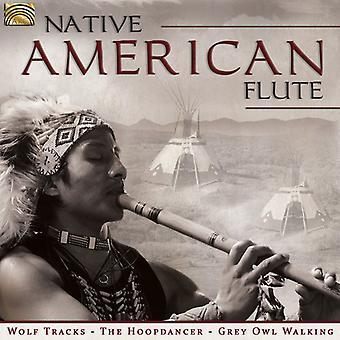 Flauta nativa americana - importación USA flauta americana nativa [CD]