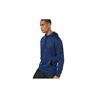 Reebok Thermowarm D94224 universal all year men sweatshirts