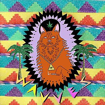 Wavves - King of the Beach [CD] USA import