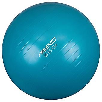 Avento Fitness/Gym Ball Dia. 55 Cm Blau