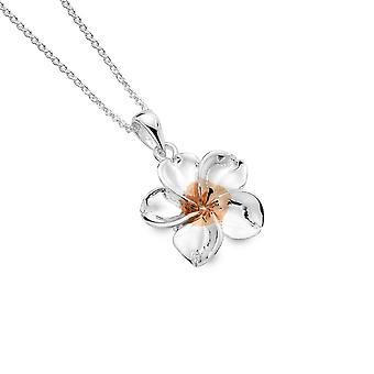 Sterling Hopea riipus kaulakoru - Alkuperä 5 terälehti kukka + ruusu kullattu