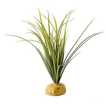 Exo Terra Schildkrötengraspflanze (Reptilien , Dekoration , Künstliche Pflanzen)