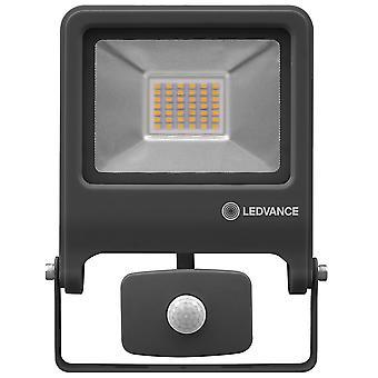 Ledvance LV206762 Floodlight 30W 400K (Coolwhite) Sensor Dark Grey