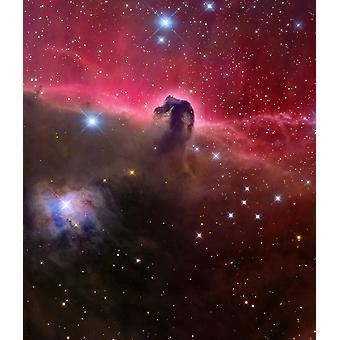 La tête de cheval nébuleuse Barnard 33 dans la constellation d'Orion Poster Print par Roberto ColombariStocktrek Images