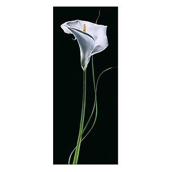 Calla Lily Poster Print von Andrea Fontana (9 x 20)