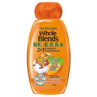 Garnier hele blends Kids 2-IN1 shampoo, 250 mL