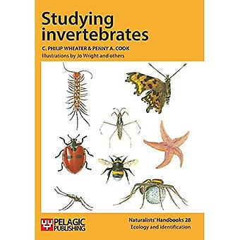 Studying invertebrates (Naturalists Handbooks)