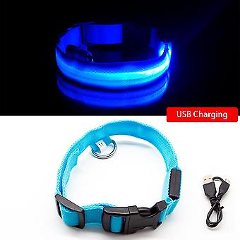 Usb charging dog collar anti-lost/avoid car accident for puppies