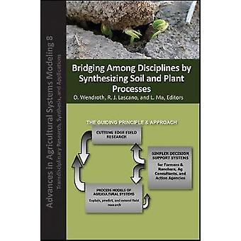 Bridging Among Disciplines by Synthesizing Soil and Plant Processes b