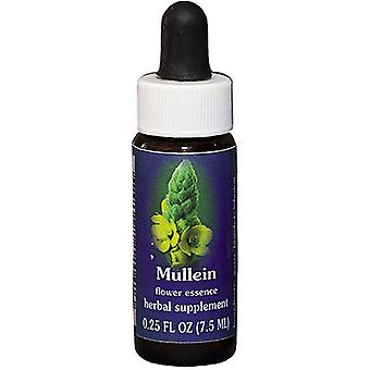 Flower Essence Services Mullein Compte-gouttes, 0,25 oz