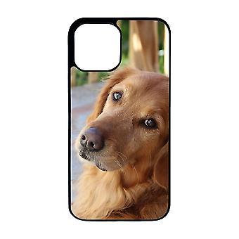 الكلب الذهبي المسترد اي فون 12 شل