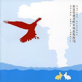 Sufjan Stevens - Enjoy Your Rabbit [CD] USA import