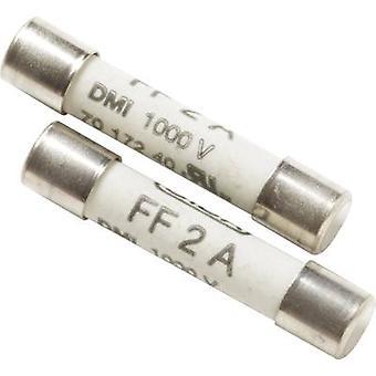 Beha Amprobe 2095180 FP200 Sulake Yleismittari sulake FP200, 2.2 A/1000 V 1 kpl