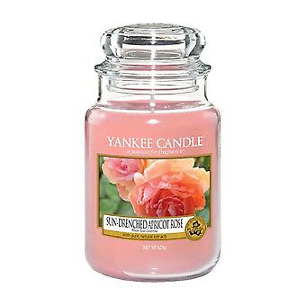 Yankee Candle Classic Grande Jar Sun-Drenched Damasco Rosa 623g