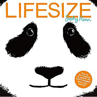 Lifesize by Sophy Henn - 9781405289573 Book