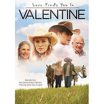 Amore trova si a San Valentino [DVD] Stati Uniti importa