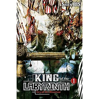 King of the Labyrinth Vol. 1 light novel by Shien Bis