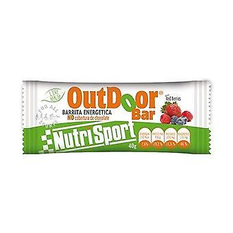 Outdoor Energy Bar (Red-Berries flavor) 1 bar