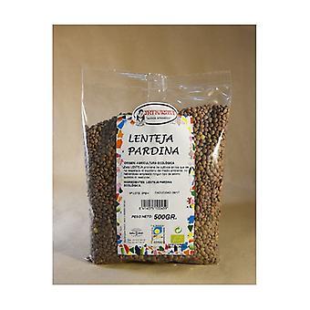 Ecological Pardina Lentil 500 g