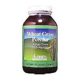 باينز قمح عشب القمح العشب 100٪ نقية, مسحوق 10 أوقية