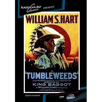 Importer des Tumbleweeds [DVD] é.-u.