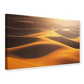 Lona impresión desierto viaje