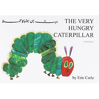 The Very Hungry Caterpillar in Urdu and English by Eric Carle - Eric