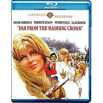 Far From the Madding Crowd [BLU-RAY] USA import
