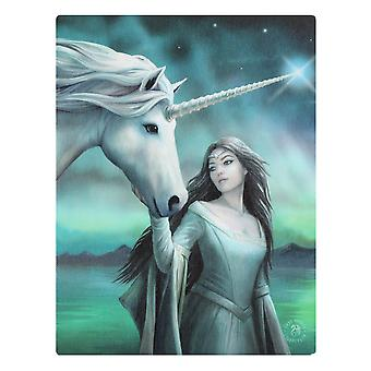 19x25 North Star Canvas By Anne Stokes