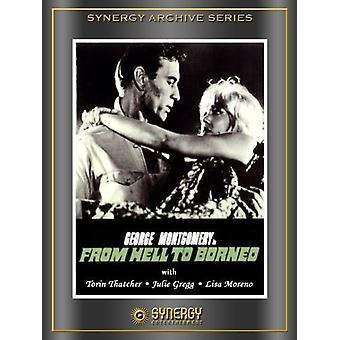 Importera från helvetet till Borneo [DVD] USA