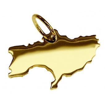Hänge karta kedja hänge i guldgult-guld i form av Ukraina