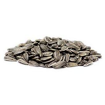 Sunflower Seeds Roasted Salted-( 24lb )