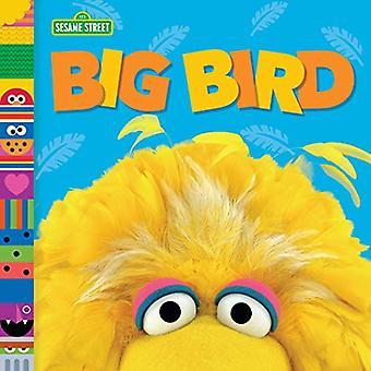 Big Bird by Andrea Posner-Sanchez - 9781984895882 Book