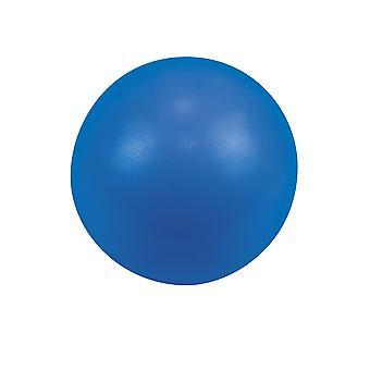 Urban Fitness Exercise Fitness Pilates Gym Training Ball 25cm