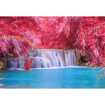 Tapeta Mural Tat Kuang Si Rainforest Waterfall w Laosie