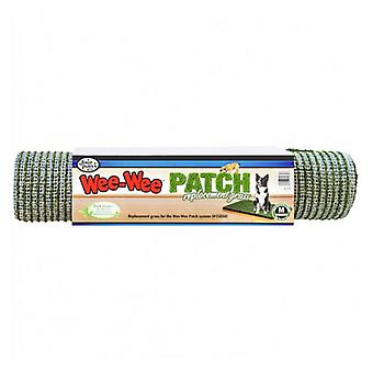 """Four Paws Wee Wee Patch Replacement Grass - Medium (20"""" Long x 30"""" Wide)"""