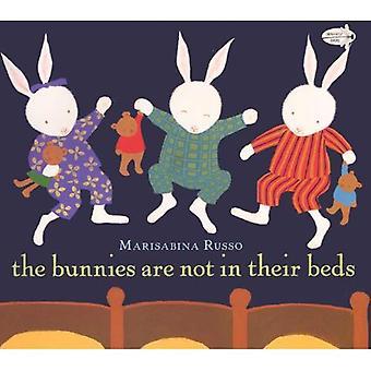Os coelhos não estão em suas camas