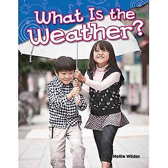 Wat Is het weer? (Kleuterschool) (Wetenschap lezers)