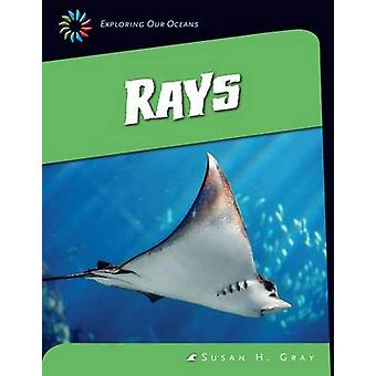 Rays by Susan H Gray - 9781624315992 Book
