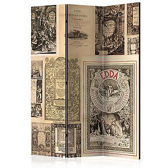 Paravent 3 volets - Vintage Books [Room Dividers]