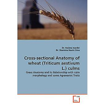 CrossSectional Anatomy of Wheat Triticum Aestivum L. Culms by Joarder & Dr Nasima